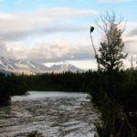 Visiting Katmai National Park: Adventure, Bears & Beauty, Oh My!