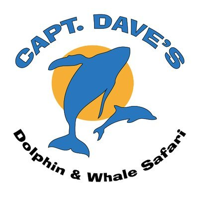 captain-daves-dolphin-whale