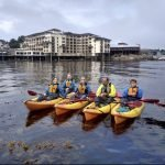 Four kayakers in Monterey Bay