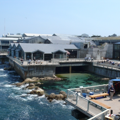MontereyBayAquariumBackview-1